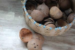 IMG_9783 coconut shells Saivou